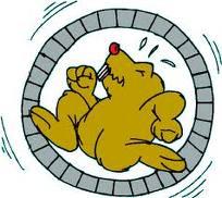 hamster-on-a-wheel