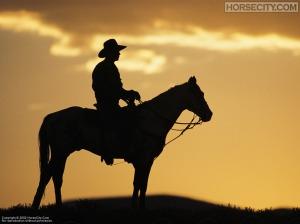 cowboy_1024